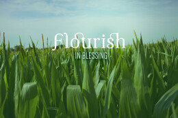 Flourish in Blessing